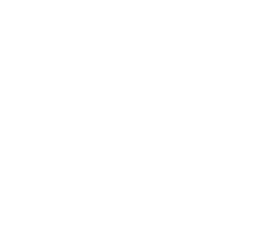 HS Platinum